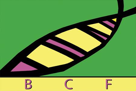 bcf-logo-450x300